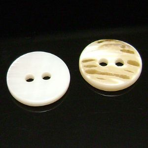 Shell button, white, brown, Diameter 12mm, 2mm, 5 buttons, (XMK243)